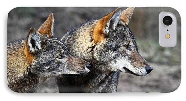 Wolf Alert IPhone Case by Steve McKinzie