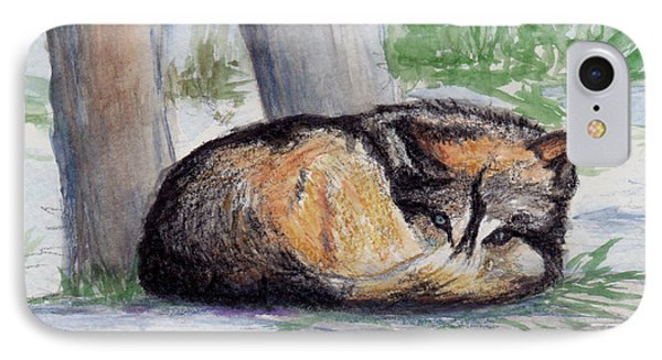 Wolf At Rest IPhone Case by Brenda Thour