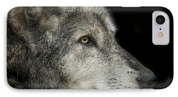 Wolf IPhone Case by Paul Neville
