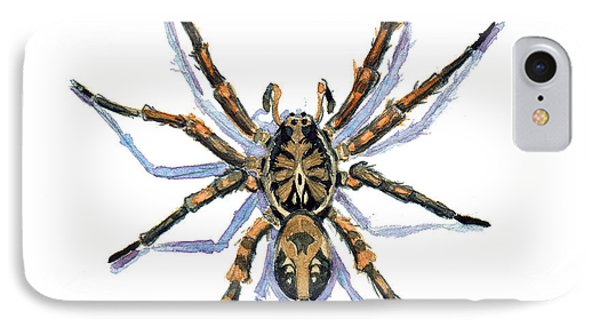 IPhone Case featuring the painting Wolf Spider by Katherine Miller