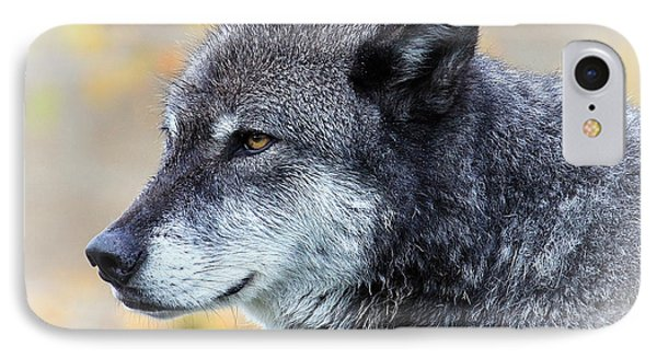 Wolf IPhone Case by Steve McKinzie