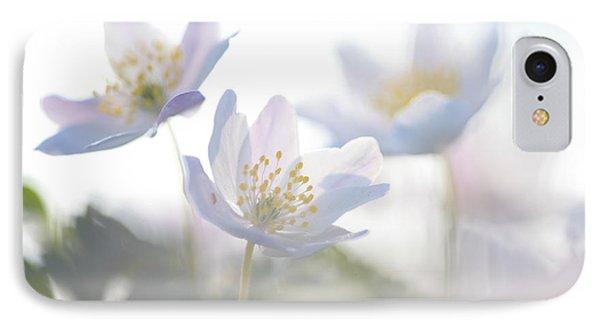 Wood Anemone Flowers Netherlands IPhone Case by Heike Odermatt