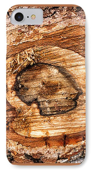 Wood Detail IPhone Case by Matthias Hauser