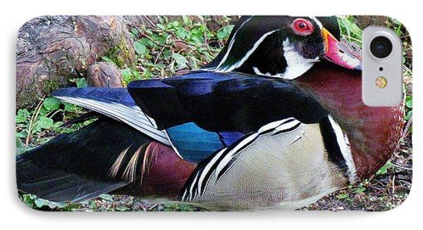Wood Duck Phone Case by Cynthia Guinn