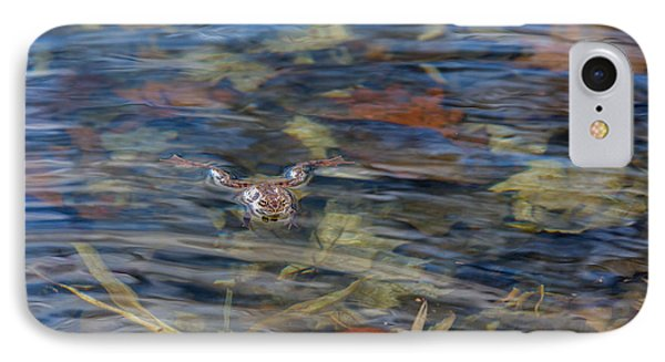 Wood Frog IPhone Case by Bill Wakeley