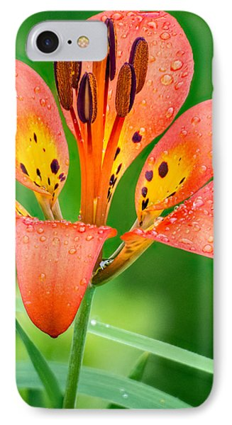Wood Lily IPhone Case