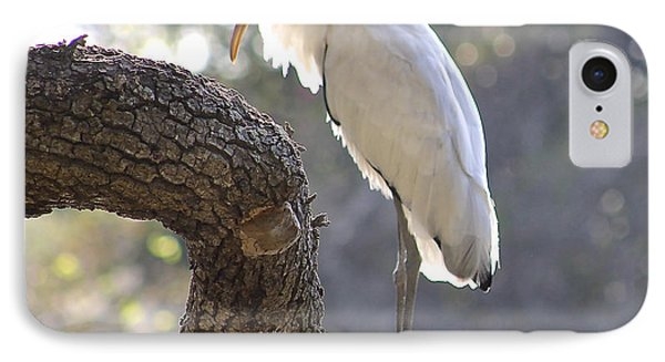 Wood Stork At Magnolia Cemetery    Tery IPhone Case by Jeanne Kay Juhos