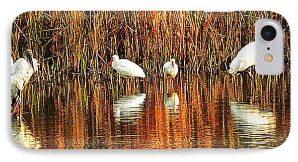 Wood Storks And 2 Ibis IPhone Case by Bill Barber
