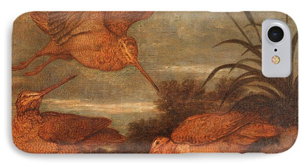 Woodcock At Dusk, Francis Barlow, 1626-1702 IPhone Case by Litz Collection