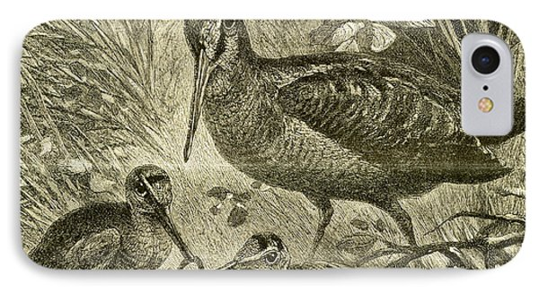 Woodcock Austria 1891 IPhone Case by Austrian School