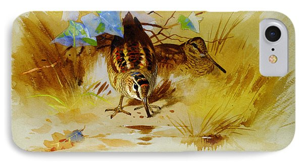 Woodcock In A Sandy Hollow IPhone Case by Celestial Images