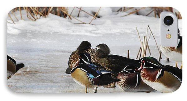 Woodies On Ice Phone Case by Thomas Pettengill