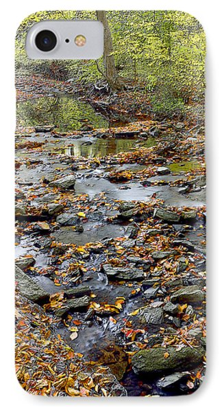 Woodland Brook In Fall Montgomery County Pennsylvania IPhone Case by A Gurmankin