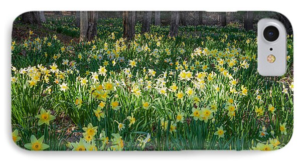 Woodland Daffodils Phone Case by Bill Wakeley