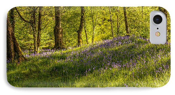 Woodland Of Bluebells IPhone Case