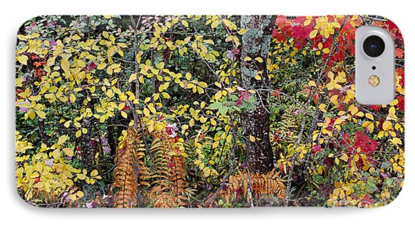 Woodland Tapestry IPhone Case by Alan L Graham