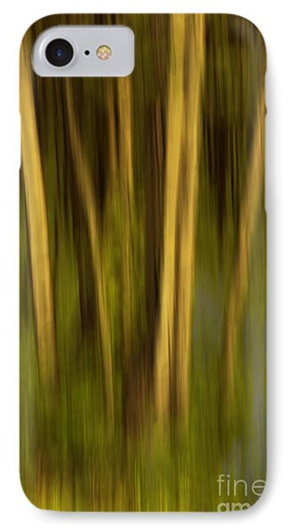 Woodland Tapestry IPhone Case by Sandi Mikuse