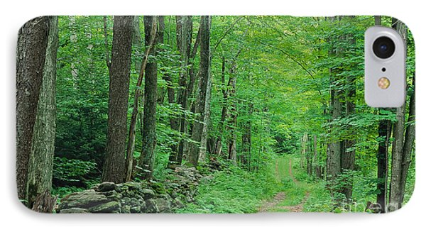 Woodland Trail IPhone Case by Alan L Graham