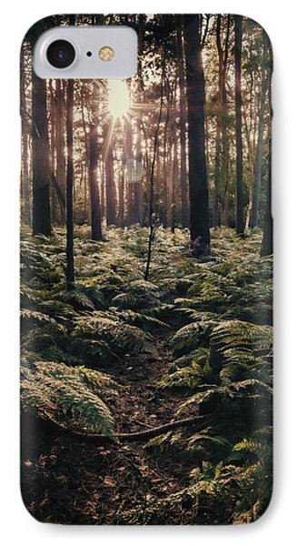 Woodland Trees IPhone Case by Amanda Elwell