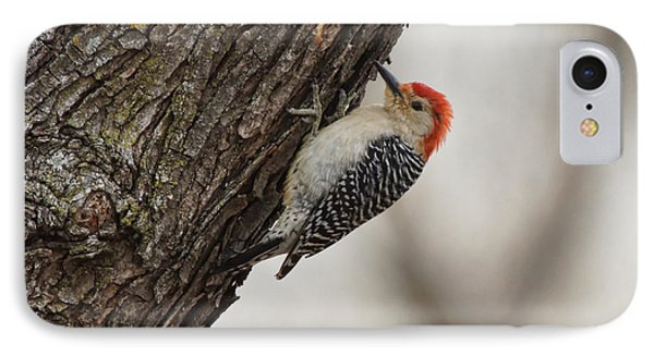 Woodpecker Phone Case by Alan Hutchins