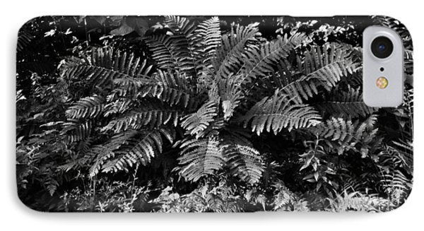 Wood's Ferns  IPhone Case by Betty  Pauwels