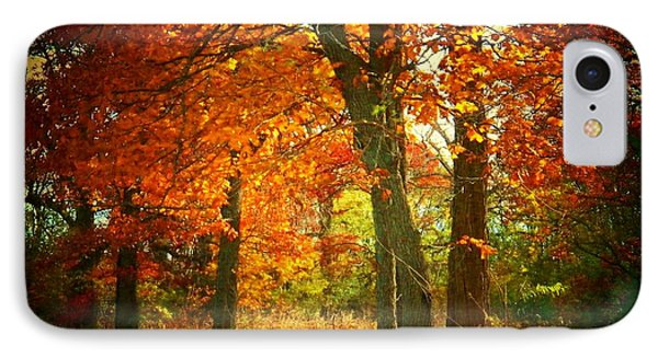 Woods In Autumn IPhone Case by Joyce Kimble Smith