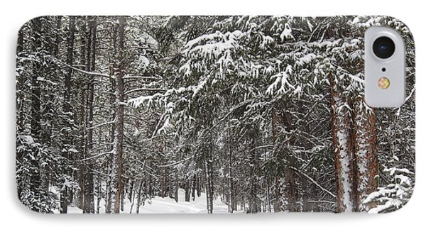 Woods In Winter IPhone Case by Eric Glaser