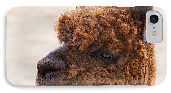 Woolly Alpaca Phone Case by Jerry Cowart