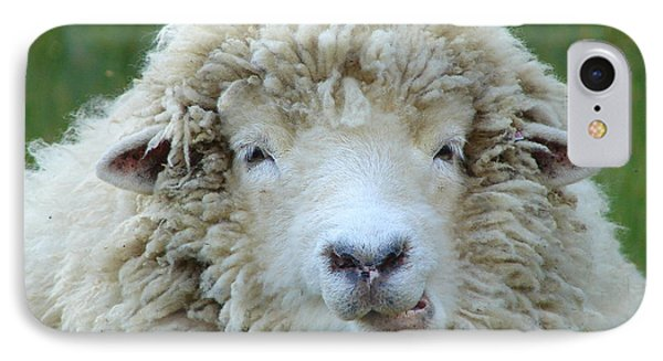 IPhone Case featuring the photograph Wooly Sheep by Ramona Johnston