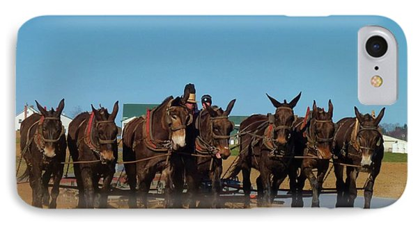 IPhone Case featuring the photograph Working Mules by Jeanette Oberholtzer