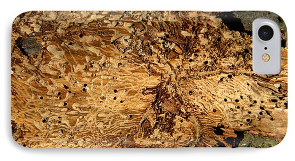 IPhone Case featuring the photograph Worm Wood - 2 by Kenny Glotfelty