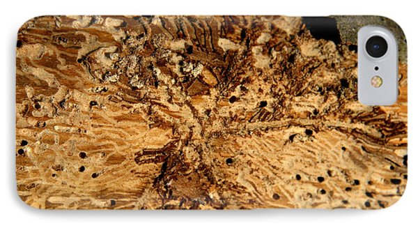 IPhone Case featuring the photograph Worm Wood - 3 by Kenny Glotfelty