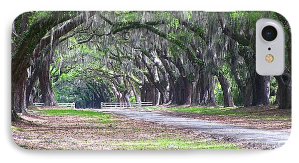 Wormsloe Drive 2 IPhone Case by D Wallace