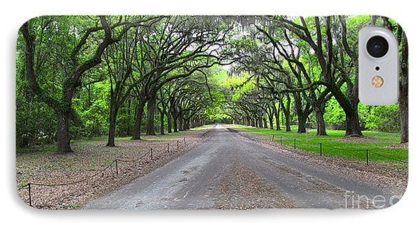Wormsloe Drive IPhone Case by D Wallace