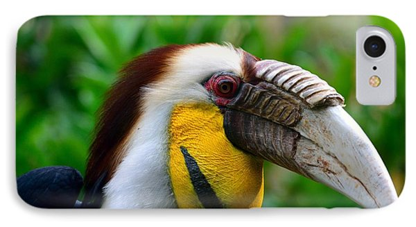 IPhone Case featuring the photograph Wreathed Hornbill by Lisa L Silva