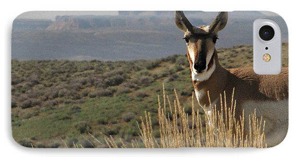 Wyoming Pronghorn IPhone Case