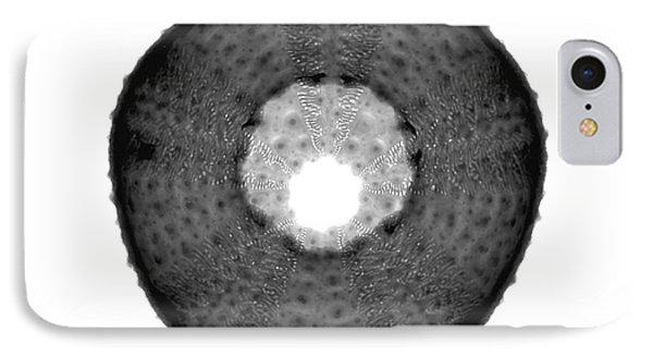 X-ray Of Sea Urchin IPhone Case