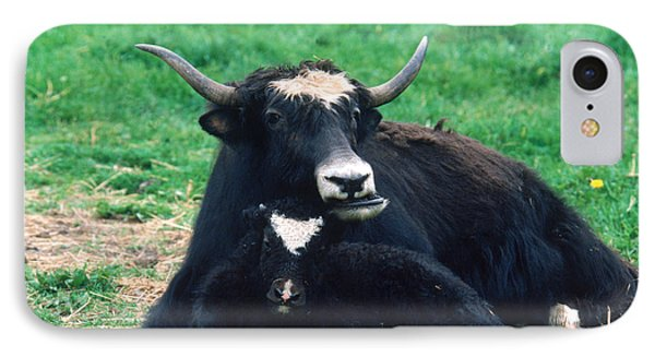 Yak IPhone 7 Case by Mark Newman