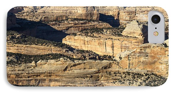Yampa River Canyon In Dinosaur National Monument IPhone Case