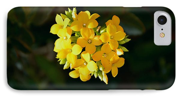 IPhone Case featuring the photograph Yellow Allegria  by Ramona Matei