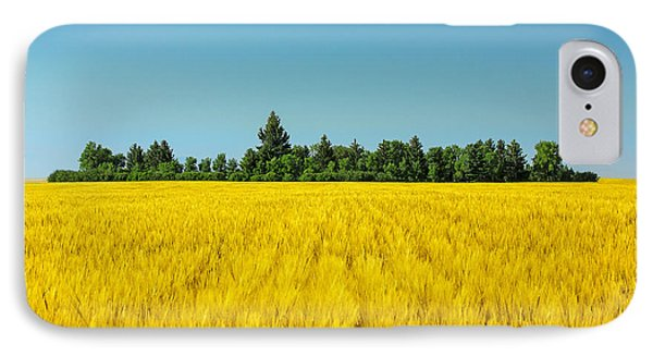 Yellow And Blue Make Green IPhone Case by Todd Klassy