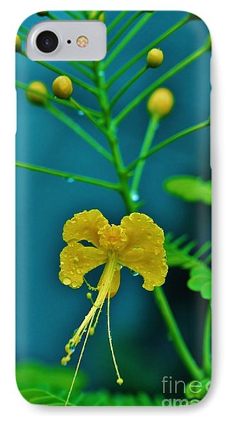 IPhone Case featuring the photograph Yellow And Delicate  by Craig Wood