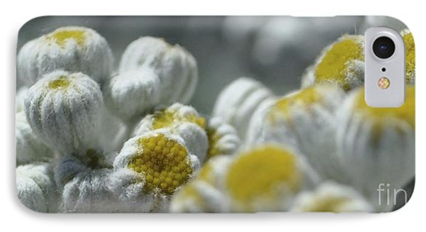 Yellow And Gray Buds 2 IPhone Case