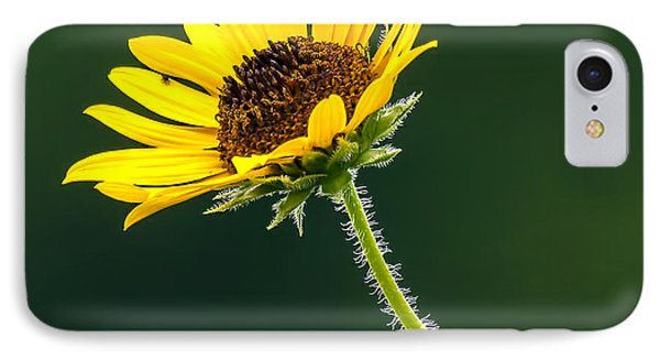 IPhone Case featuring the photograph Yellow And Green Delight by David Lester