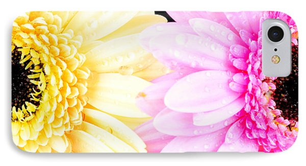 Yellow And Pink Daisy  IPhone Case