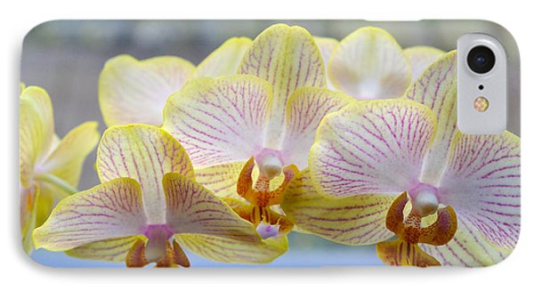 Yellow And Pink Orchids IPhone Case