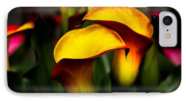 Yellow And Red Calla Lily IPhone Case by Menachem Ganon