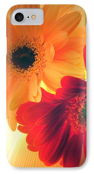 Yellow And Red Gerberas IPhone Case