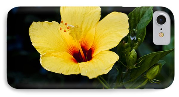 Yellow And Red Hibiscus IPhone Case