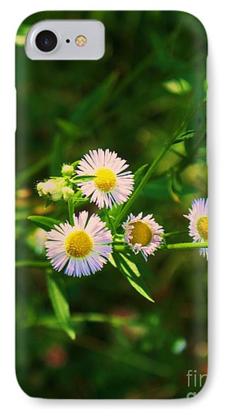 Yellow And White Dasies Phone Case by Eric  Schiabor